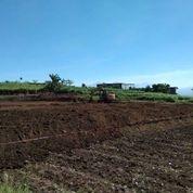 Tanah Kavling Siap Bangun Belakang Parkiran Wisata BNS Kota Batu Malang (28949099) di Kota Batu