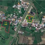 Tanah -+1 Ha Dan 5362 M2 Samata. (28983460) di Kab. Gowa