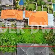 Tanah Jalan Raya Campuhan Ubud Bali (28984873) di Kab. Gianyar