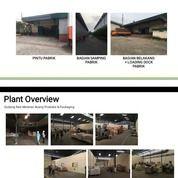 Pabrik Snack Masih Aktif (28985422) di Kota Bogor