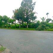 Tanah Wlingi Blitar (29012300) di Kab. Blitar