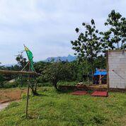 Tanah Murah Di Bogor (29019805) di Kab. Bogor
