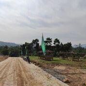 Tanah Murah Pinggir Jalan Di Sukamakmur Bogor (29019900) di Kab. Bogor