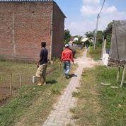 Pekarangan Pribadi Siap Bangun Perbatasan Tulangan Jatikalang Prambon Sidoarjo Jawa Timur (29033606) di Kab. Sidoarjo