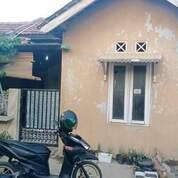 Rumah Murah 3 Kamar Dekat Tol Serang Timur. (29035280) di Kota Serang