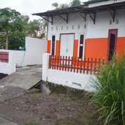 Rumah Second Lamongan (29040809) di Kab. Lamongan