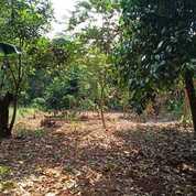 Tanah Murah Di Burangkeng Bekasi WA (0813.8740.1006) (29071039) di Kota Bekasi