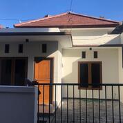 Rumah Premium Pusat Kota Denpasar (29075526) di Kota Denpasar
