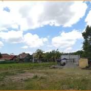 Kavling Matang Legalitas SHMP Row Jalan 5 Meter Timur LPMP (29102519) di Kab. Sleman