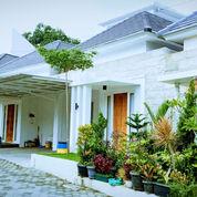 Spesial Hanya 1 Unit Terakhir,Lokasi Di Sambiroto Semarang Timur (29125626) di Kota Semarang
