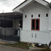 Rumah Murah Dekat Stasiun Purwokerto Barat (29173214) di Kab. Banyumas