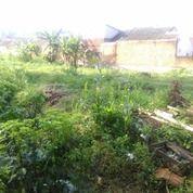 Tanah Padat 4500m2 Tengah Kodya Malang (29189705) di Kota Malang