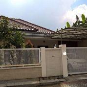 Rumah Villa Bukit Permai Surabaya Barat Dekat Lontar & Pakuwon Indah (29249298) di Kota Surabaya