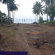 Kavling Los Pantai Siap bangun hotel atau Villa