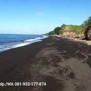 Tanah Tambak Murah Bayan Lombok Utara (29302002) di Kab. Lombok Utara