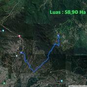 Tanah Area Cisalak Subang Luas 59 Ha (29315046) di Kab. Subang