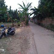 Tanah 1700 M Pinggir Jalan Kaujon Belakang UPI (29317467) di Kota Serang