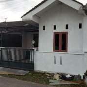 Rumah Second Bagus Murah Dekat Stasiun Purwokerto Barat (29324909) di Kab. Banyumas