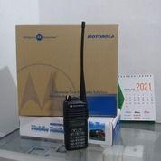 Motorola CP1660 (29389632) di Kota Batam