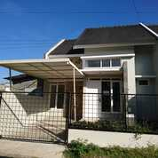 Ready Rumah Baru Nyaman Bisa Nego Di Kota Malang (29392900) di Kota Malang