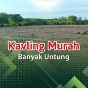 Di Cari Kavling Murah Dekat Wisata Datae Sidrap Sumber Air Bersih (29399009) di Kab. Pinrang