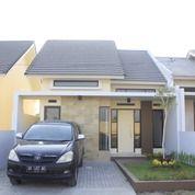 Rumah Elegan Minimalis Type 45 Di Lingkungan Yang Asri (29413832) di Kab. Lombok Barat