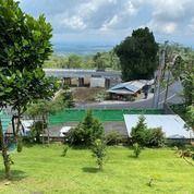 Tanah Bonus Bangunan Full View Dikawasan Bedugul Baturiti Tabanan (29416272) di Kota Denpasar