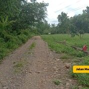 Investasi Kavling Tanah Green Herbal Village Dekat Gowa Bukit Mempesona (29424470) di Kota Makassar