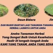 Kavling Tanah Siap Bangun Di Dekat Makassar Lingkungan Pesantren (29433270) di Kota Makassar