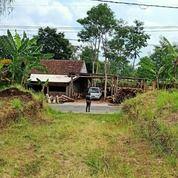 Tanah Istimewa Lokasi Super Strategis Harga Terjangkau (29433752) di Kota Malang