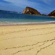 Tanah 124 Are Gerupuk Beach Front (29451300) di Kab. Lombok Tengah