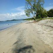 Tanah 135 Are Sekotong Beach Front (29451398) di Kab. Lombok Tengah
