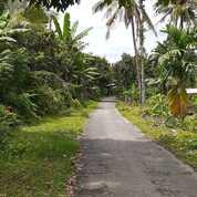 Tanah Kebun Buah Buahan Di Lombok Tengah (29452865) di Kab. Lombok Tengah