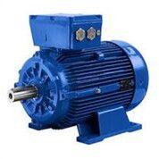 Motology Motor / Electric Motor 3 Phase 30 HP 22 KW (29453650) di Kab. Sumbawa Barat