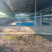 Kandang Sapi Sukaraja Cianjur Luas 2,7 Hektar Kapasitas 1500 Ekor (29462603) di Kab. Sukabumi