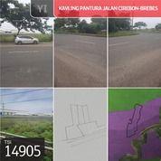 Kavling Pantura Jalan Raya Cirebon-Brebes, Brebes, Jawa Tengah, 8.747 M, SHM (29464617) di Kab. Brebes