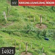 Kavling Leuwiliang, Bogor, 243.000 M, SHM (29470733) di Kab. Bogor