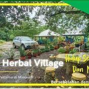 Kavling Tanah Kampung Herbal Di Dekat Makassar Tanah Datar (29475305) di Kab. Pinrang