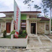 Rumah Modern Griya Janatin Leyangan (29484035) di Kab. Semarang