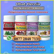 Obat Paling Ampuh Untuk Mengobati Hernia Turun Berok Tanpa Operasi (29511465) di Kota Langsa