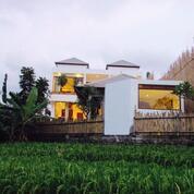 Villa Dikawasan Batubolong Canggu Dkt Pepito Deus Old Man Echo Beach (29518806) di Kota Denpasar