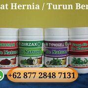Obat Terlaris Hernia - Turun Berok Herbal Berkualitas Di Jamin Sembuh Tanpa Operasi (29530715) di Kota Bengkulu