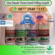 Obat Turun Berok Paling Ampuh Tanpa Operasi Di Apotik K24 (29549226) di Kota Tangerang