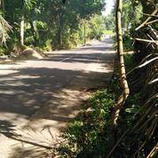 Tanah Buat Lesehan Rumah Makan Di Suranadi Lombok Barat (29552921) di Kab. Lombok Barat