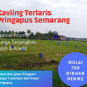 Tanah Strategis Dekat Jalan Pringsari Pringapus Semarang (29572178) di Kab. Semarang
