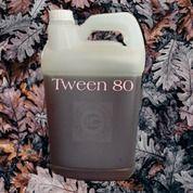 Tween 80 ( Penyatuh Air Dan Minyak ) (29573547) di Kab. Labuhanbatu Selatan
