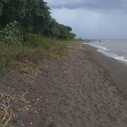 Tanah 100 Hektar Untuk Tambak Udang Lombok Timur (29577863) di Kab. Lombok Timur