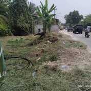 Tanah 665 M Pinggir Jalan Raya Dekat Kampus New Untirta Sindangsari (29585141) di Kab. Serang