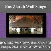 BIRO, 0882-3938-9598, Bus Ziarah Wali Songo, 2021, RANGGAWARSITA (29603685) di Kota Semarang