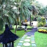 Experience World Class Service At Urbanest Inn Villa Seminyak (29604427) di Kab. Badung